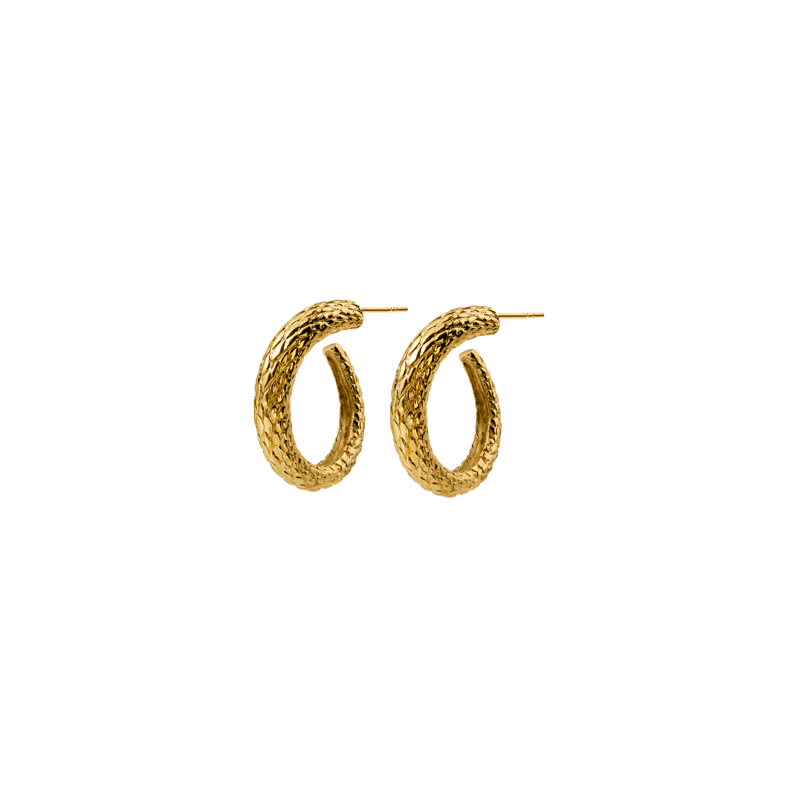 snake hoops /gold
